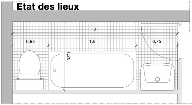 5 plans pour agencer une salle de bains couloir i styles - Petite salle de bain plan ...