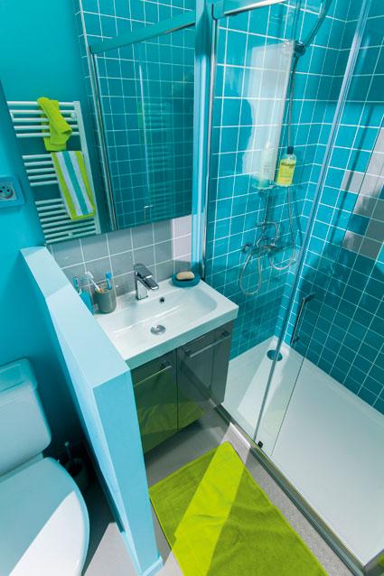 D cryptage d 39 une salle d 39 eau avec toilettes i styles de bain for Wc dans salle de bain