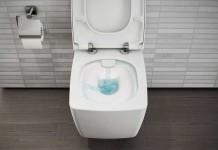 une salle de bains avec des toilettes bien cach es styles de bain. Black Bedroom Furniture Sets. Home Design Ideas