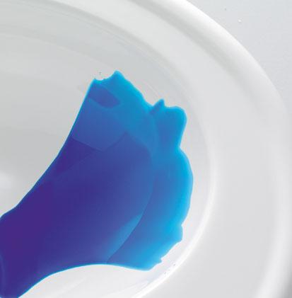 Vue sur une cuvette WC avec eau bleue