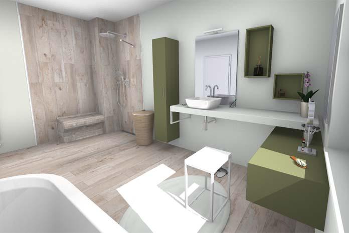Une salle de bains zen, vue sur le plan-vasque et la douche
